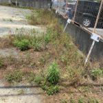 鳥栖市 草刈、鳥栖市 片付け、鳥栖市 遺品整理、鳥栖市 残置物撤去